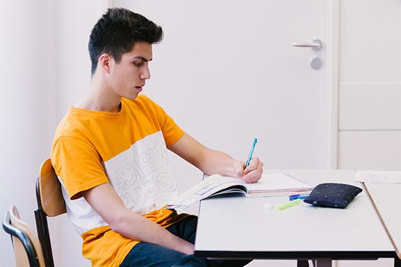 Examens DELF DALF